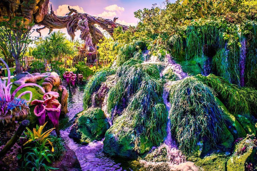 Valley of Mo'ara   Disney's Animal Kingdom