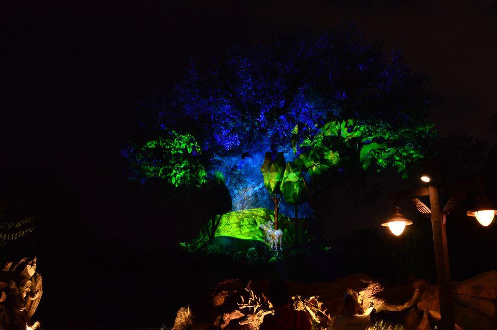 Tree Of Life Awakenings Disney S Animal Kingdom